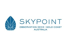 skypoint logo