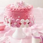 pink_princess_strawberry_marshmellow_cake_jpg